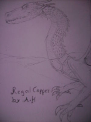 Regal Copper, by Anderzswe94