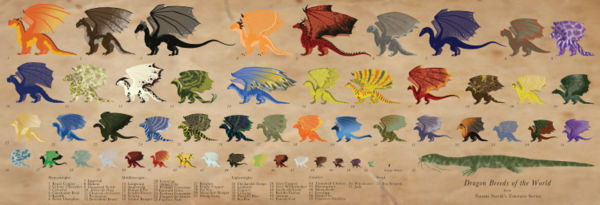 Dragon Breeds, by Drummergirl375